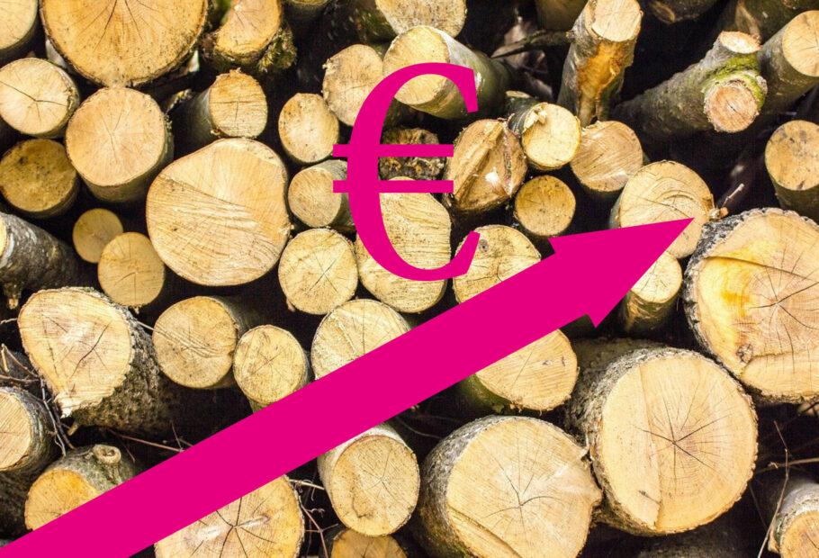 Holzpreise steigen kräftig